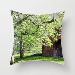 The Old Hospital Throw Pillow