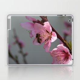 Honey Bee Feeding on Peach Tree Blossom Laptop & iPad Skin