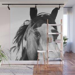 Paint Horse | Modern Horse Art Wall Mural
