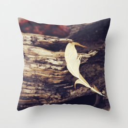 Beach Feathers Throw Pillow
