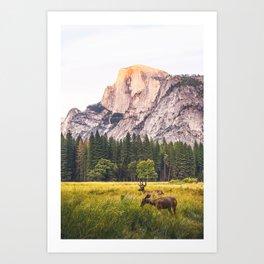 Mountain National Park Art Print