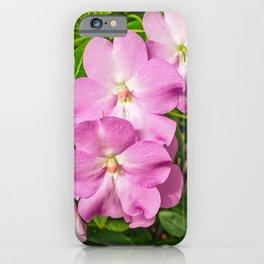 Pink Impatiens iPhone Case