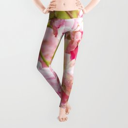 Soft wild roses Leggings