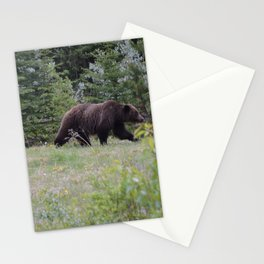 Grizzly bears in the Rocky Mountains Stationery Cards
