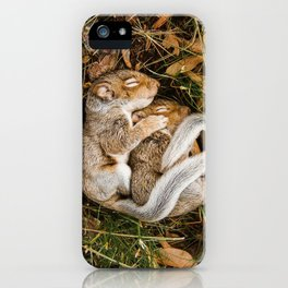 Two baby squirrels cuddling as they sleep iPhone Case