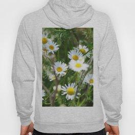 Wild Daisies Hoody