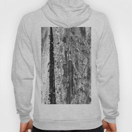 Carvings in Tree Trunk Gnarly Texture Pattern Hoody