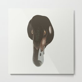 Duckface loon Metal Print