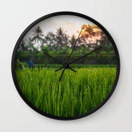 Bali Rice Field at Sunset Wall Clock