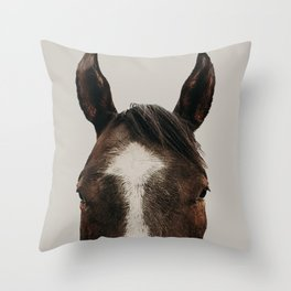 Trigger King of Paints Throw Pillow