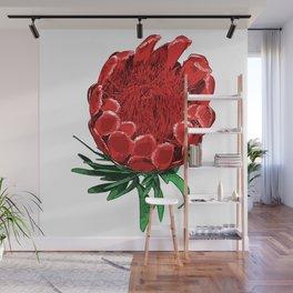 Beautiful Protea Flower - Wonderful Australian Native Flower Wall Mural