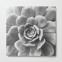 succulent bloom Metal Print