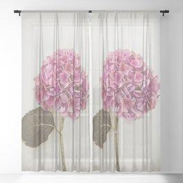 Beautiful Pink Hydrangea Sheer Curtain