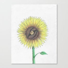 Seeing Sunflowers Canvas Print