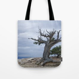 A storm on the horizon Tote Bag