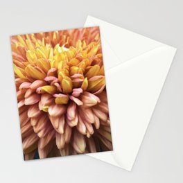 Longwood Gardens Autumn Series 216 Stationery Cards