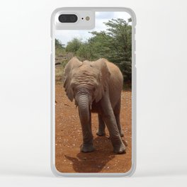 Baby Elephant Posing Clear iPhone Case