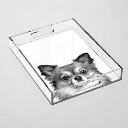 Black and White Chihuahua Acrylic Tray