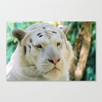 apollo Canvas Prints featuring Apollo... by Lisa Argyropoulos