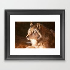 Wolf Beauty Framed Art Print