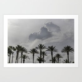 Alabama Palms Art Print