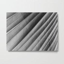 Under Leaf Metal Print