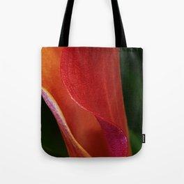 Inner She Folds Tote Bag