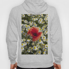 Poppy and the flowers Hoody