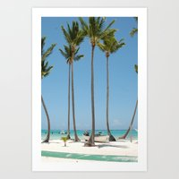 Palmies Art Print