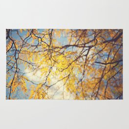 Gold Leaves and Blue Sky Rug