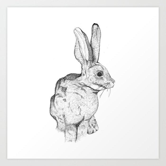 Bushman Hare Art Print by kirsteninglis