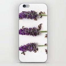 Arrangement 6-2015 iPhone & iPod Skin