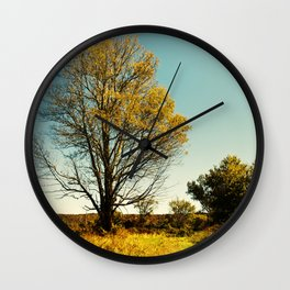 Nature's Path Wall Clock