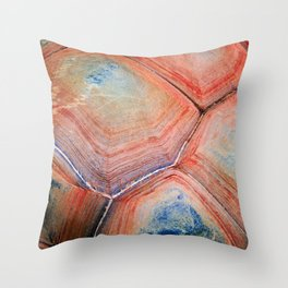 Shell Topography Throw Pillow