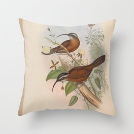 Scimitar bill2 Throw Pillow