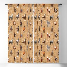 Wild Mustang Horses 3 Blackout Curtain
