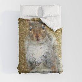 Cute Squirrel Comforters