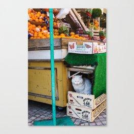 Le Chat du Marché Canvas Print
