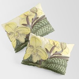 Paphiopedilum concolor Pillow Sham