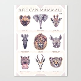 African Mammals Poster and Pattern Canvas Print