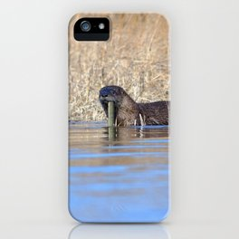 Watercolor Otter 14, Janes Island, Maryland iPhone Case