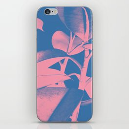Rubber Plant pink and blue iPhone Skin