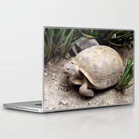 tortoise Laptop & iPad Skins featuring Tortoise by lennyfdzz
