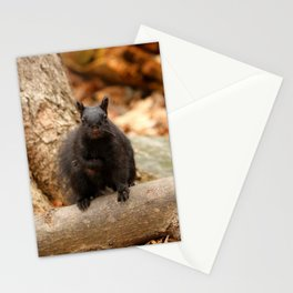 Do you love me Stationery Cards