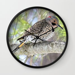Northern Flicker Showing His Colors Wall Clock
