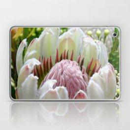 Australian Protea Laptop & iPad Skin