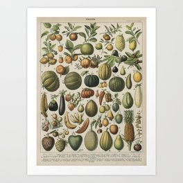 Mostly Fruits Art Print