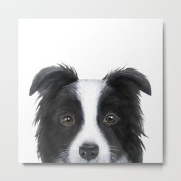 border collie Original painting print by miart Metal Print
