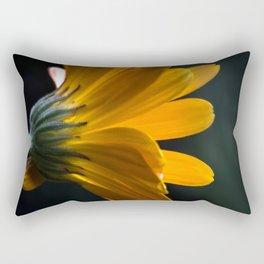 unterwegs_1110 Rectangular Pillow