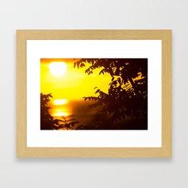 Dreaming in Paradise Framed Art Print